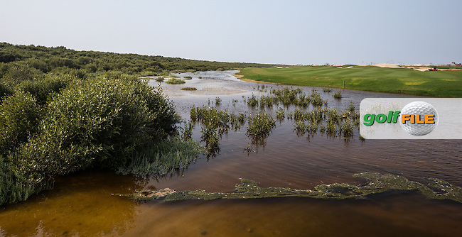 View of the mangroves at Al Zorah Golf Club, Dubai, United Arab Emirates.  26/01/2016. Picture: Golffile | David Lloyd<br /> <br /> All photos usage must carry mandatory copyright credit (&copy; Golffile | David Lloyd)