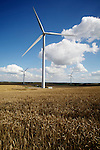 Pix: Shaun Flannery/shaunflanneryphotography.com...COPYRIGHT PICTURE>>SHAUN FLANNERY>01302-570814>>07778315553>>..28th August 2012..Wind Farm at Marr, nr. Doncaster.