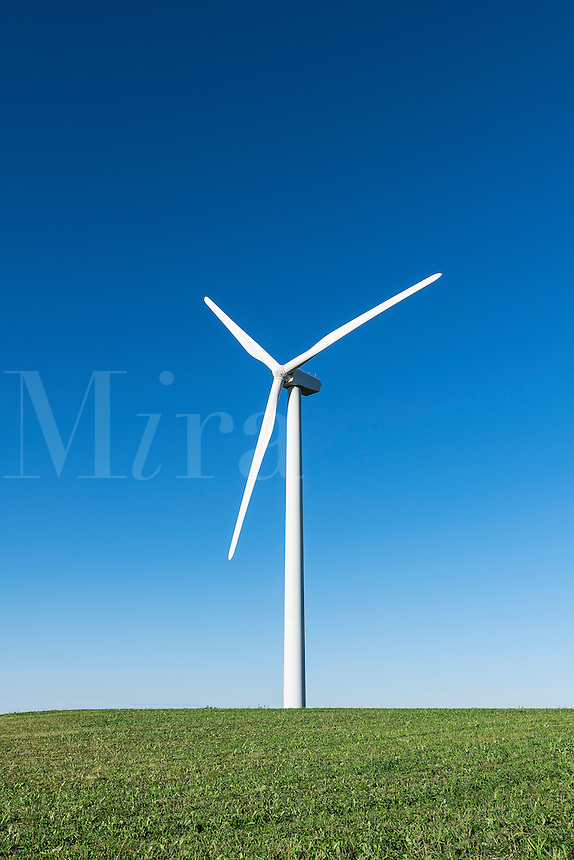 Wind farm, Canastota, New York, USA