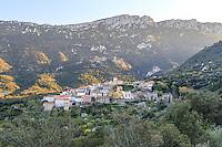 France, Aude (11), Duilhac-sous-Peyrepertuse, le village le soir // France, Aude, Duilhac-sous-Peyrepertuse, the village in the evening