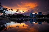 Sunset behind the Ala Moana Beach Park pond's tree line on O'ahu, with luxury condos in the background.
