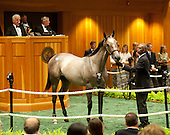 2012 FASIG TIPTON SARATOGA SELECT SALES -- ALL IMAGES
