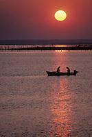 Europe/France/Aquitaine/33/Gironde/Bassin d'Arcachon: Pêcheurs à l'aube