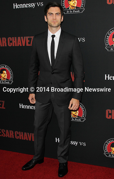 Pictured: Wes Bentley<br /> Mandatory Credit &copy; Frederick Taylor/Broadimage<br /> Premiere Of Pantelion Films And Participant Media's &quot;Cesar Chavez&quot; - Arrivals<br /> <br /> 3/20/14, Hollywood, California, United States of America<br /> <br /> Broadimage Newswire<br /> Los Angeles 1+  (310) 301-1027<br /> New York      1+  (646) 827-9134<br /> sales@broadimage.com<br /> http://www.broadimage.com