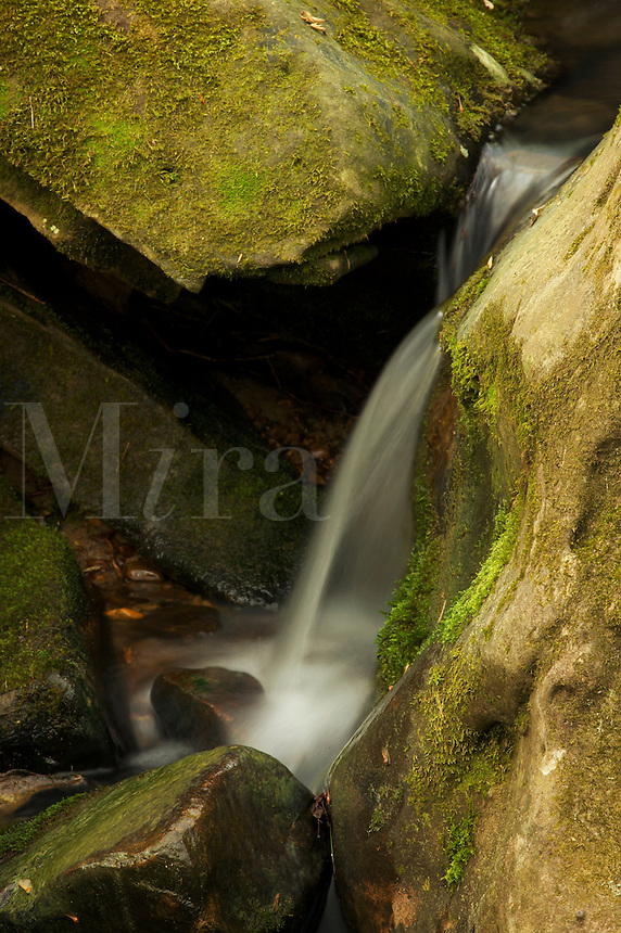 Cascading stream, Tishomingo State Park, Mississippi