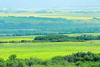 Farmland<br /> Baljennie<br /> Saskatchewan<br /> Canada
