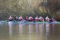 Crew: 2   Op U23 8+ U23   Oxford Brookes University Boat Club   OXB-COHEN<br /> <br /> Wallingford Head 2017<br /> <br /> To purchase this photo, or to see pricing information for Prints and Downloads, click the blue 'Add to Cart' button at the top-right of the page.