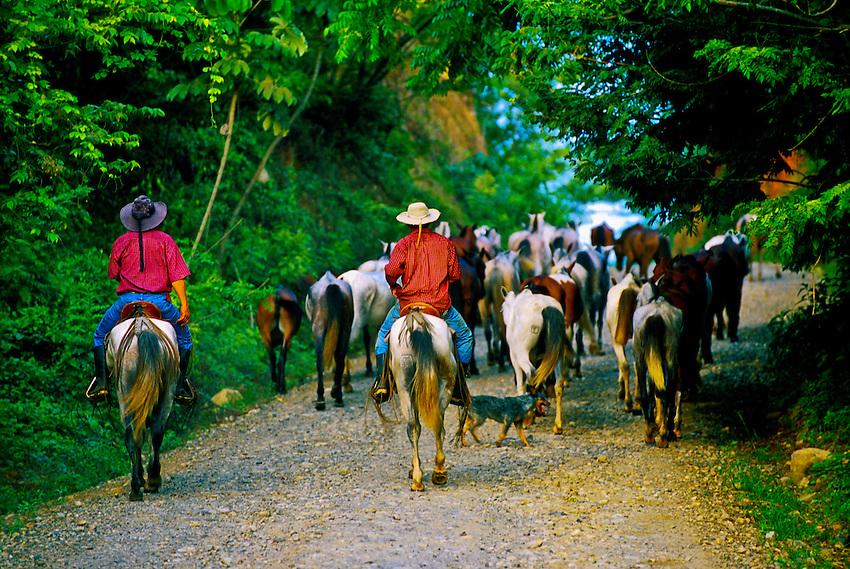 Cowboys, Rincon de la Vieja, Costa Rica