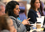 Neavda Assemblywoman Olivia Diaz, D-North Las Vegas, works in committee at the Legislative Building in Carson City, Nev., on Tuesday, Feb. 17, 2015. <br /> Photo by Cathleen Allison