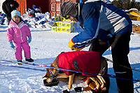 Four year old Anita Jemewouk of Elim watches veterinarian Norbert Gaulton of Australia  examine a Colleen Robertia dog at the Elim checkpoint during the 2010 Iditarod