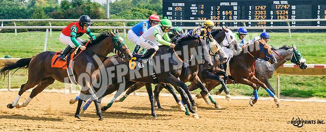 Persie winning at Delaware Park on 9/8/16