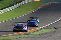 #14 EMIL FREY JAGUAR RACING (CHE) EMIL FREY JAGUAR G3 GT3 LORENZ FREY (CHE) STEPHANE ORTELLI (MCO) ALBERT COSTA (ESP) PRO CUP