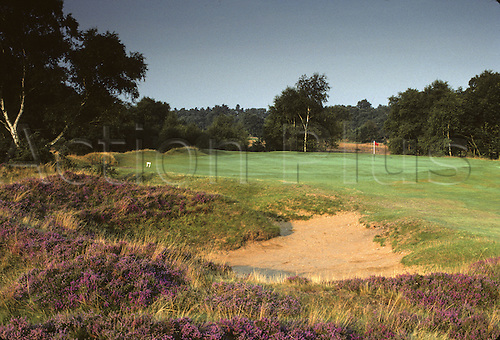 View of the bunker on the 8th green at the Woodhill Spa Golf Club, Lincolnshire, England. Photo: Brian Morgan/actionplus.. .course courses general view views scene scenery spectacular clubs landscape venue English eighth 067