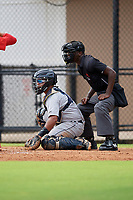 GCL Tigers West catcher Pedro Hurtado (7) and umpire Jaylen Goodman during a Gulf Coast League game against the GCL Phillies West on July 27, 2019 at the Carpenter Complex in Clearwater, Florida.  (Mike Janes/Four Seam Images)