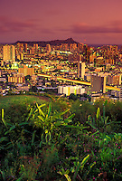 View of the Honolulu City lights from Punchbowl, taken at dusk with Diamond Head in the background. Night blooming cereus in the foreground.