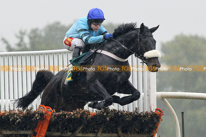 Race winner Ironical ridden by Tom Scudamore in jumping action in the Support Norfolk Hospice Novices Handicap Hurdle - Horse Racing at Fakenham Racecourse, Norfolk - 19/10/12 - MANDATORY CREDIT: Gavin Ellis/TGSPHOTO - Self billing applies where appropriate - 0845 094 6026 - contact@tgsphoto.co.uk - NO UNPAID USE