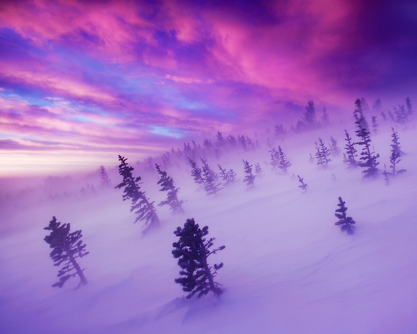 """""""THE WINTER TEMPEST"""" - An icy wind blows across the tundra during a vibrant winter sunrise in the Rocky Mountains of Colorado near Longs Peak."""