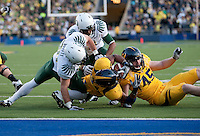 Shane Vereen almost reaches the end zone with help from Spencer Ladner (45). The Oregon Ducks defeated the California Golden Bears 15-13 at Memorial Stadium in Berkeley, California on November 13th, 2010