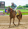 Unto Thou winning at Delaware Park on 6/26/17