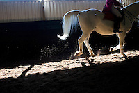JOHANNESBURG, SOUTH AFRICA - JULY 19:  Women school Lipizzaner Stallions at the South African School.  The South African Lipizzaners have earned the honour of being the only performing Lipizzaners outside Vienna recognised by and affiliated to the Spanish Riding School and a close association is maintained between the two establishments.  (Photo by Landon Nordeman)