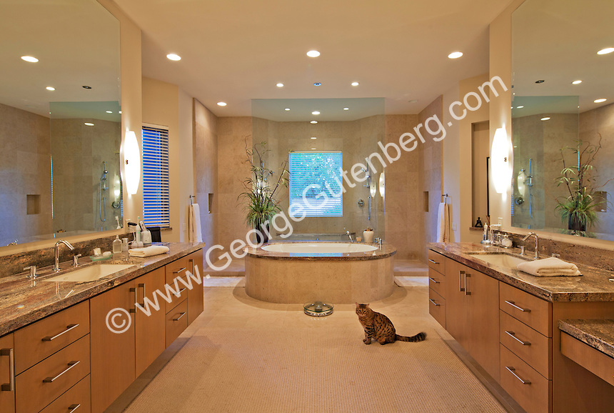 Stock photo of residential master bathroom stock photo of Luxury master bathroom suites