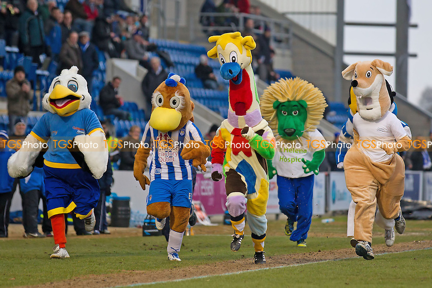The mascot race at half time raised a cheer - Colchester United vs Preston North End - NPower League One Football at the Weston Homes Community Stadium - 09/02/13 - MANDATORY CREDIT: Ray Lawrence/TGSPHOTO - Self billing applies where appropriate - 0845 094 6026 - contact@tgsphoto.co.uk - NO UNPAID USE.