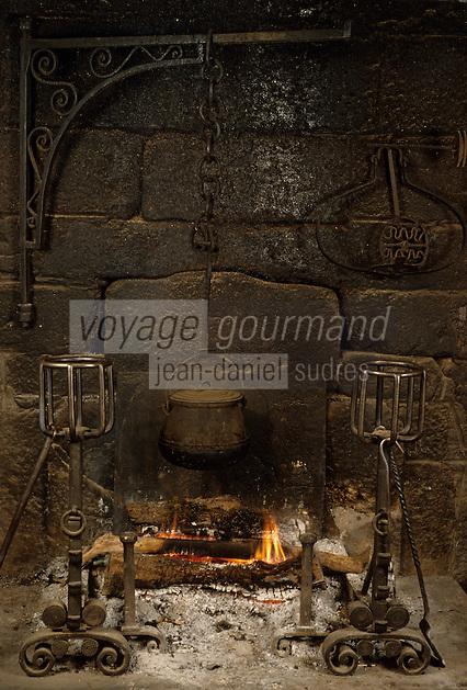 Europe/France/Midi-Pyrénées/12/Aveyron0/Aubrac/Env de Laguiole : Château du Bousquet - Détail cheminée