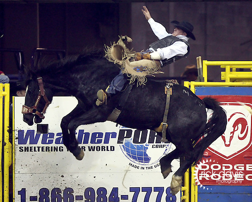 1/24/09--Photo by Rick Davis--PRCA cowboy Dustin Reeves of Owanka, South Dakota scores a 76 point bareback bronc ride on the Calgary Rodeo Company bronc Muffled Cries during action at the 103rd National Western Stock Show and Rodeo in Denver, Colorado.