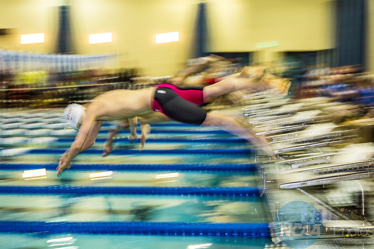 BIRMINGHAM, AL - MARCH 11: Swimmers start the Men 1650 Yard Freestyle during the Division II Men's and Women's Swimming & Diving Championship held at the Birmingham CrossPlex on March 11, 2017 in Birmingham, Alabama. (Photo by Matt Marriott/NCAA Photos via Getty Images)