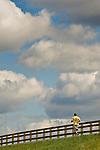 Williamsport River walk. Man in yellow shirt running.