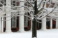 snow lan pavilion