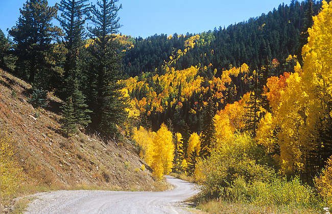 Country Road, Autumn, Wilson Mesa near Telluride, Colorado