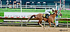 Cayucos winning at Delaware Park on 8/8/13
