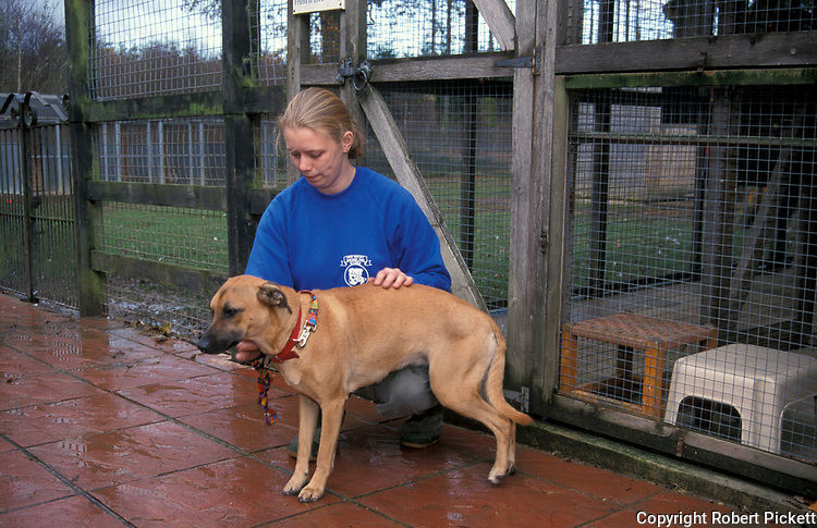 Woman at Rescue Kennels with dog, outside, checking, lead