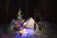 """Holiday Lights in the Wilderness""<br />