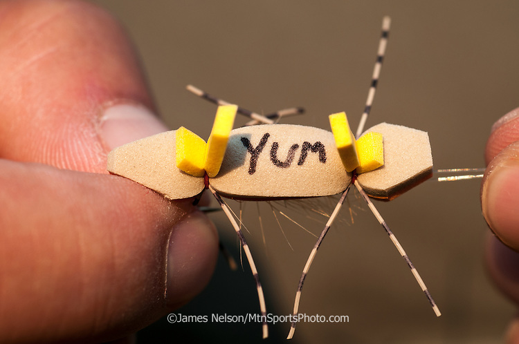 """An angler ties on a Bean's Orange Crush, a fishing fly, with the word """"Yum"""" written on it."""