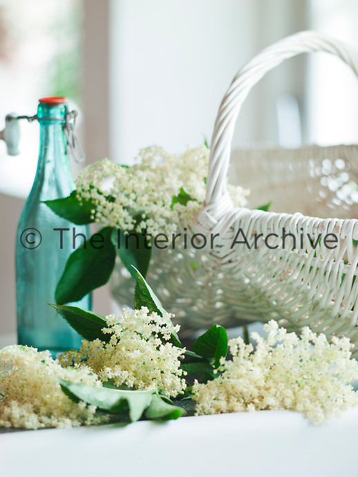 A basket of freshly cut elderflowers sits by the butler's sink in the kitchen