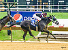 Tough Teddy winning at Delaware Park on 8/8/16