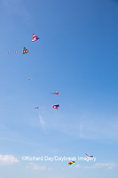 63495-02712 Kites flying at Flagler Beach Flagler Beach, FL