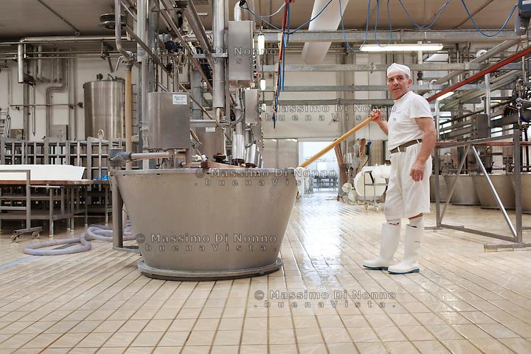 Fiorenzuola: lavorazione della produzione del Grana Padano nell'azienda Colla...Fiorenzuola: man works for the production of Grana Padano in the farm Colla