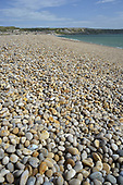 Chesil Beach looking towards Portland, Dorset, UK