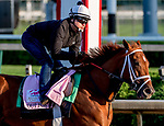 LOUISVILLE, KENTUCKY - APRIL 27: Out for a Spin, trained by Dallas Stewart, exercises in preparation for the Kentucky Oaks at Churchill Downs in Louisville, Kentucky on April 27, 2019. Scott Serio/Eclipse Sportswire/CSM