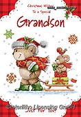 John, CHRISTMAS ANIMALS, WEIHNACHTEN TIERE, NAVIDAD ANIMALES, paintings+++++,GBHSSXC50-1021B,#XA#