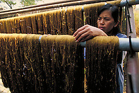 A woman hangs raw silk on a bar. Chiang Mai, Thailand Fabric manufacturing, industry. Chiang Mai, Thailand.