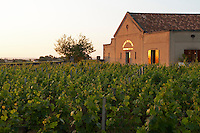the winery at sunset chateau trottevieille saint emilion bordeaux france