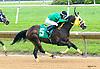 Frontier Warrior winning at Delaware Park on 7/26/17