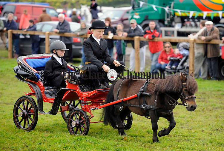 """Brothers Brian and John Gallagher compete in the driving class with their horse """"Snoopy"""" at the Clare County Show in Ennis. Photograph by John Kelly."""