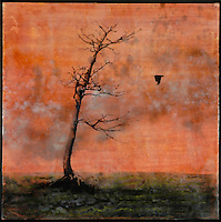 Cloudy sunset sky with bare tree silhouette encaustic painting by Florida artist Jeff League.