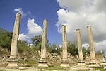 Samaria, Sebastia, ruins of the forum of the Roman city Sebaste