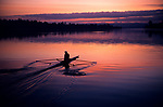 One crewman rowing on Montlake Cut with oars in the water and shell creating wake, sunrise, looking west at sunrise Seattle, Washington USA